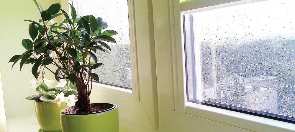 как избавиться от желтизны на окнах
